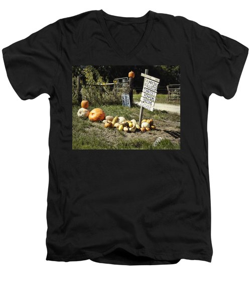 Men's V-Neck T-Shirt featuring the photograph Today's Harvest by Cricket Hackmann
