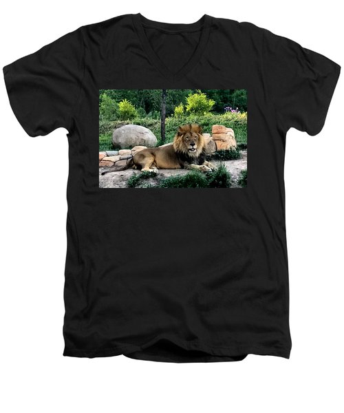 Tomo, The King Of Beasts Men's V-Neck T-Shirt