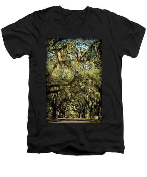 Towering Canopy Men's V-Neck T-Shirt by Carla Parris