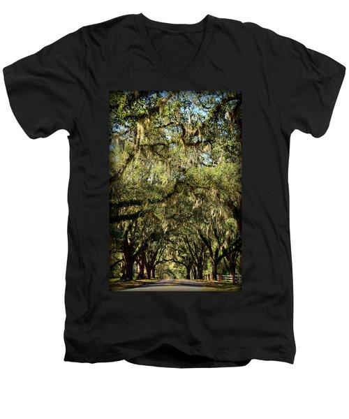 Towering Canopy Men's V-Neck T-Shirt