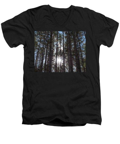 Towering Pines Men's V-Neck T-Shirt