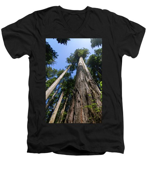 Towering Redwoods Men's V-Neck T-Shirt