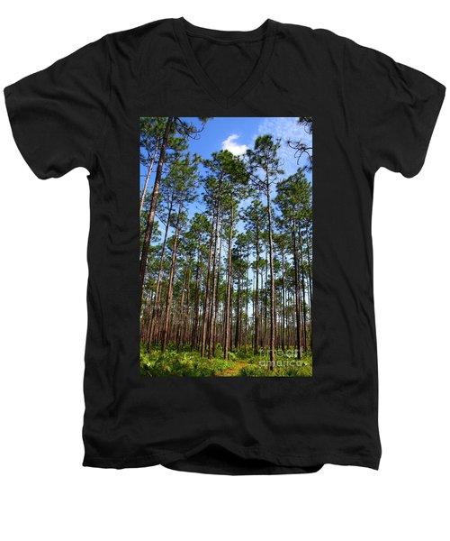 Trail Through The Pine Forest Men's V-Neck T-Shirt