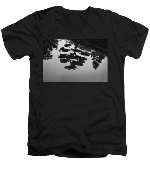 Tranquility II Men's V-Neck T-Shirt