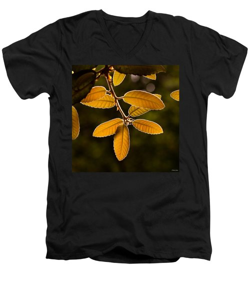Translucent Leaves Men's V-Neck T-Shirt