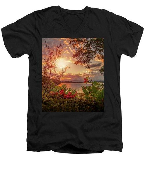 Treasures In Nature Men's V-Neck T-Shirt by Rose-Marie Karlsen