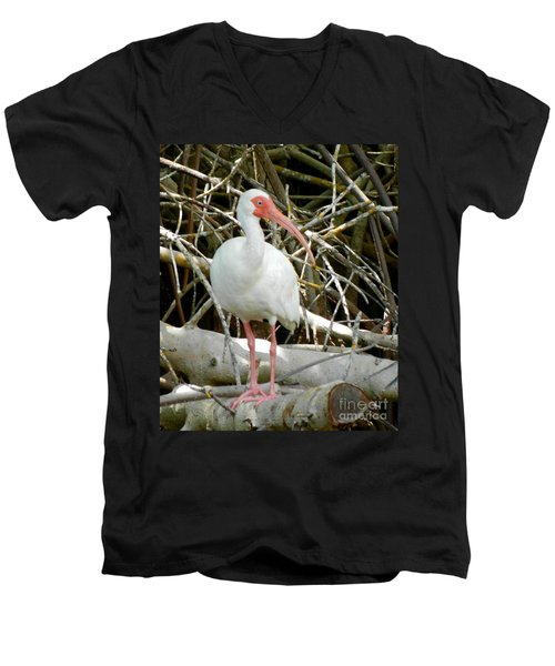 Tree Branch Men's V-Neck T-Shirt