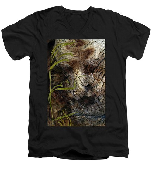 Men's V-Neck T-Shirt featuring the photograph Tree Memories # 37 by Ed Hall