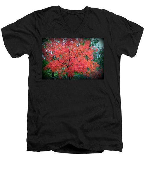 Men's V-Neck T-Shirt featuring the photograph Tree On Fire by AJ Schibig