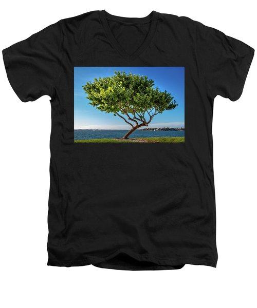 Tree On The Bay Men's V-Neck T-Shirt