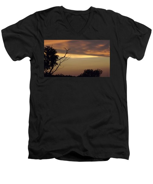 Trees Of The Lake Men's V-Neck T-Shirt by Don Koester