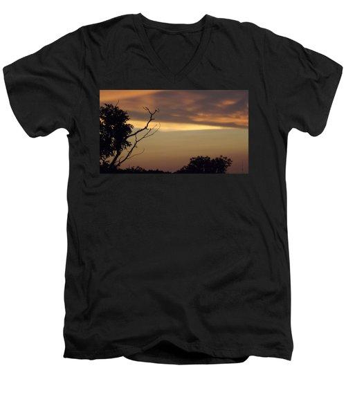 Trees Of The Lake Men's V-Neck T-Shirt