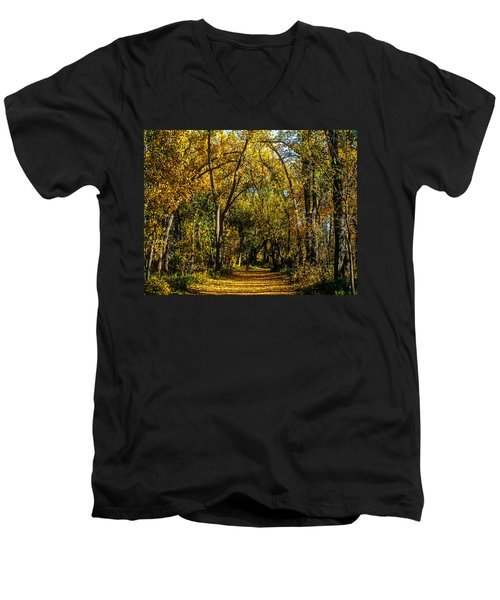 Trees Over A Path Through The Woods In Fall Color Men's V-Neck T-Shirt