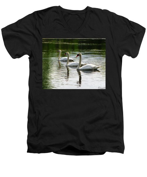 Triplet Swans Men's V-Neck T-Shirt