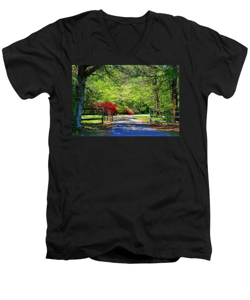 Men's V-Neck T-Shirt featuring the photograph Tucked Away by Kathryn Meyer