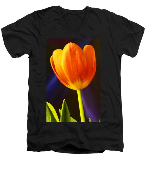 Tulip Men's V-Neck T-Shirt by Marlo Horne