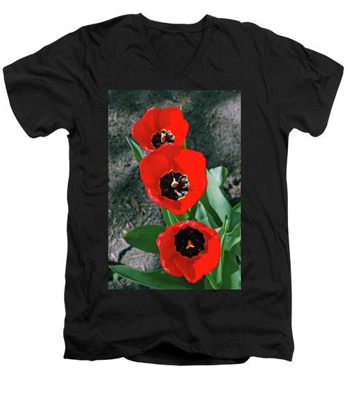 Men's V-Neck T-Shirt featuring the photograph Tulip Trio by LeeAnn McLaneGoetz McLaneGoetzStudioLLCcom