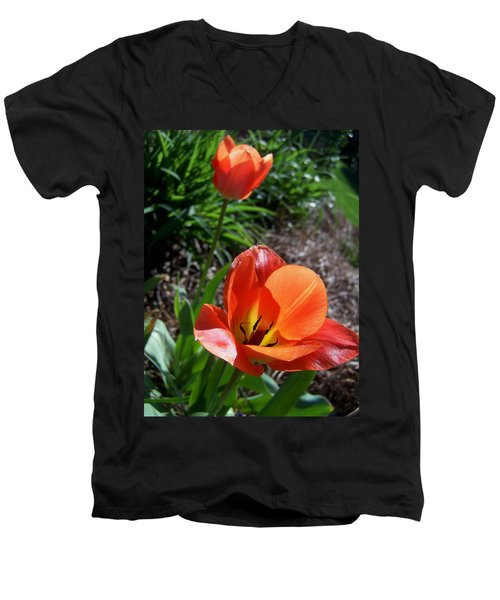 Men's V-Neck T-Shirt featuring the photograph Tulips Wearing Orange by Sandi OReilly