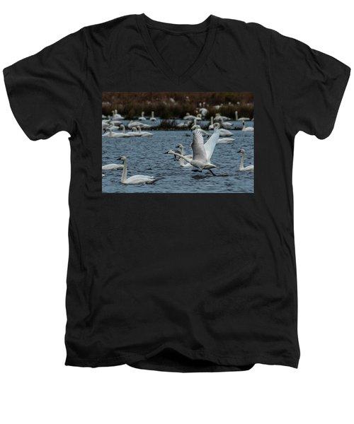 Tundra Swan And Liftoff Head Start Men's V-Neck T-Shirt