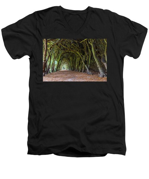 Tunnel Of Intertwined Yew Trees Men's V-Neck T-Shirt by Semmick Photo