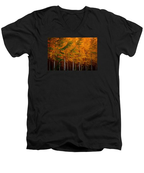 Men's V-Neck T-Shirt featuring the photograph Turning Into Gold by Dan Mihai