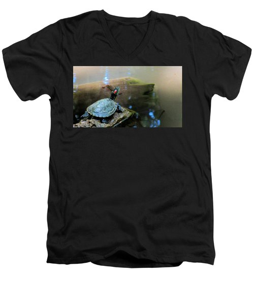 Turtle On Rock Men's V-Neck T-Shirt by Mark Barclay