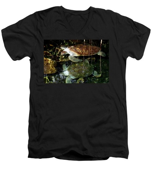 Turtles Men's V-Neck T-Shirt by Angela Murray