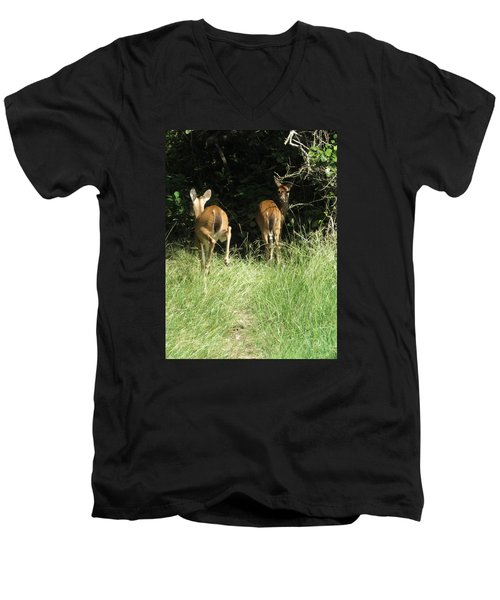 Men's V-Neck T-Shirt featuring the photograph Twin Fawns by Phyllis Beiser