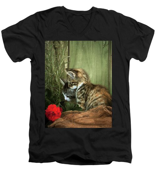 Two Cute Kittens Men's V-Neck T-Shirt