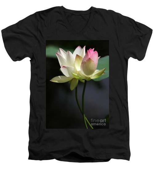 Two Lotus Flowers Men's V-Neck T-Shirt
