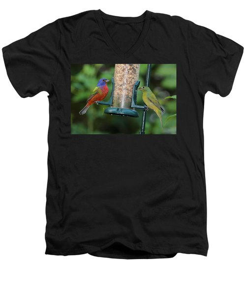 Two Painted Buntings Men's V-Neck T-Shirt