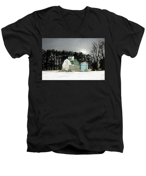 Men's V-Neck T-Shirt featuring the photograph Twos Company by Julie Hamilton