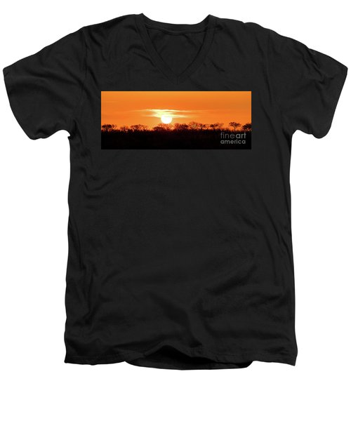 Under African Skies Men's V-Neck T-Shirt