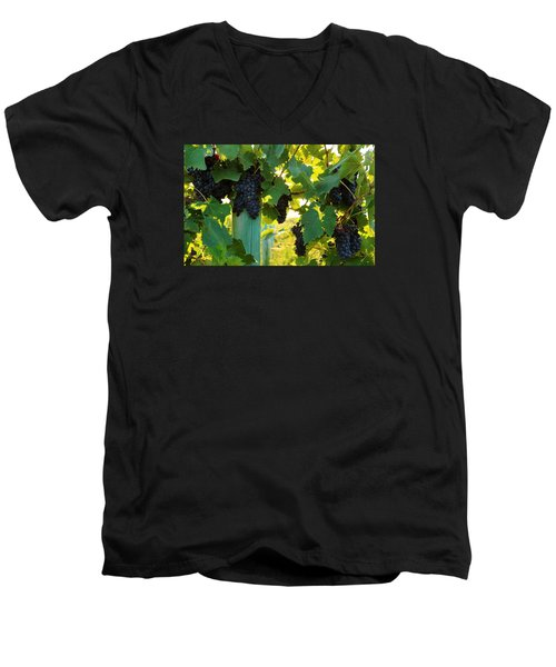 Men's V-Neck T-Shirt featuring the photograph Under The Leaves by Lynn Hopwood