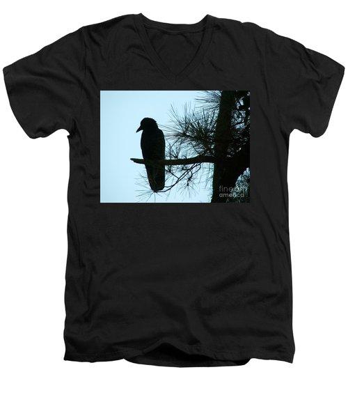 Unknown Visitor Men's V-Neck T-Shirt