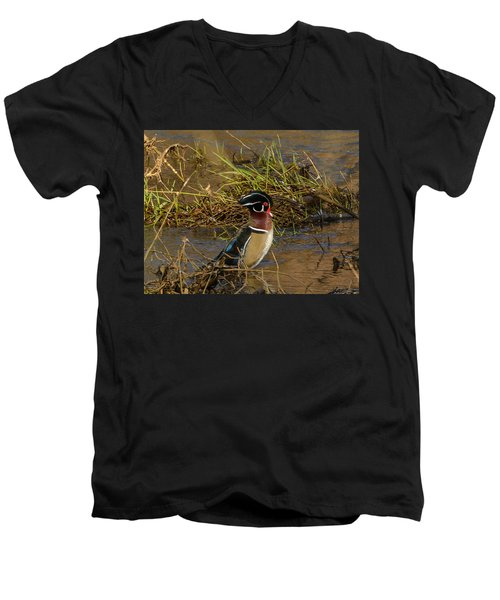 Men's V-Neck T-Shirt featuring the photograph Upright Wood Duck by Jerry Cahill