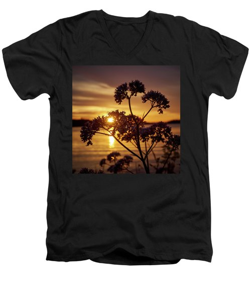 Valerian Sunset Men's V-Neck T-Shirt by Jouko Lehto