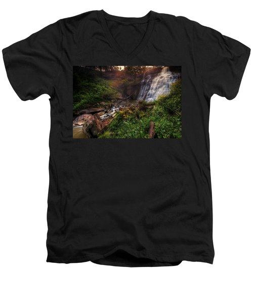 Valley Of Golden Light Men's V-Neck T-Shirt