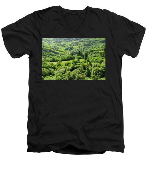 Valley Of Green Men's V-Neck T-Shirt