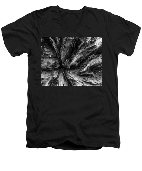 Valleys Men's V-Neck T-Shirt