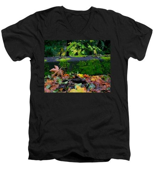 Varigated Fall Men's V-Neck T-Shirt by Marie Neder