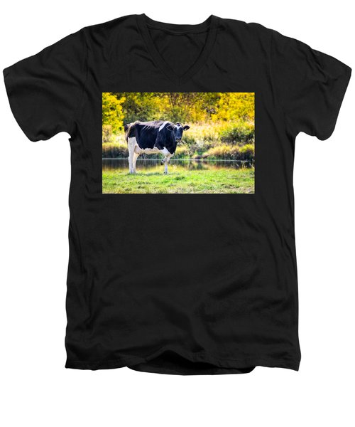 Vermont Farms.01 Men's V-Neck T-Shirt
