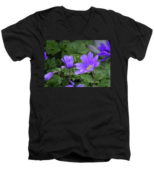 Vinca In The Morning Men's V-Neck T-Shirt