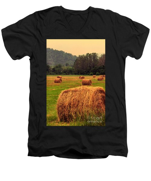 Virginia Evening Men's V-Neck T-Shirt