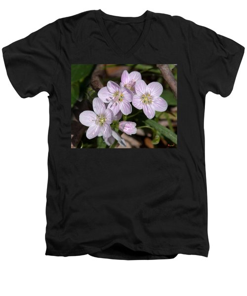 Virginia Or Narrowleaf Spring-beauty Dspf041 Men's V-Neck T-Shirt
