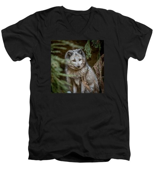 Men's V-Neck T-Shirt featuring the photograph Waiting For Red by Wade Brooks