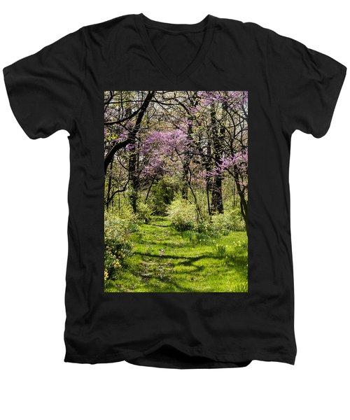 Walk In The Park Men's V-Neck T-Shirt
