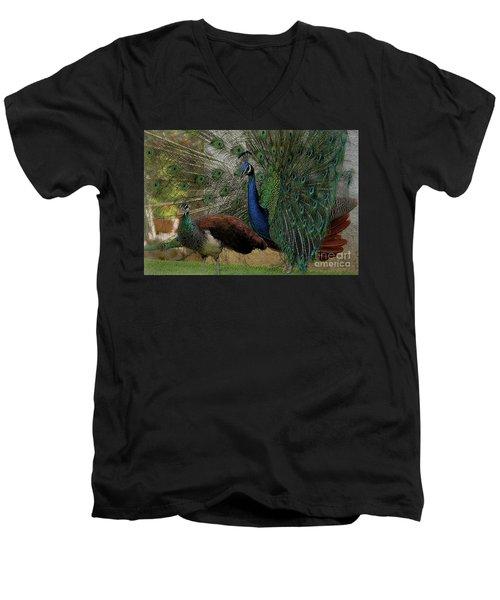 Wandering Lovers Men's V-Neck T-Shirt