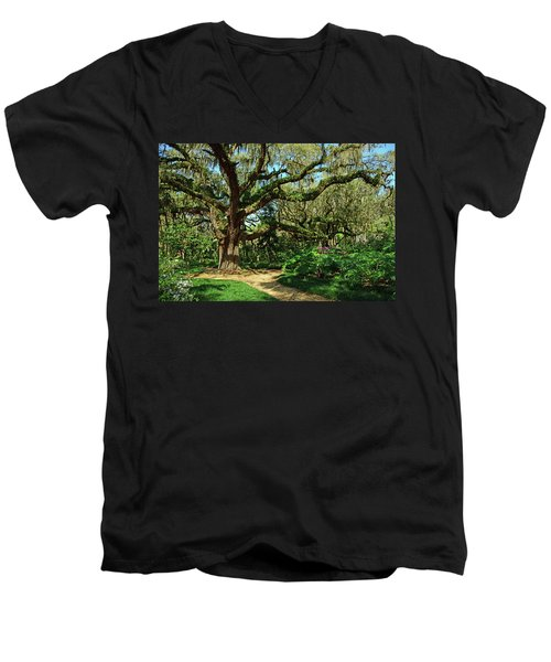 Washington Oaks Gardens Men's V-Neck T-Shirt