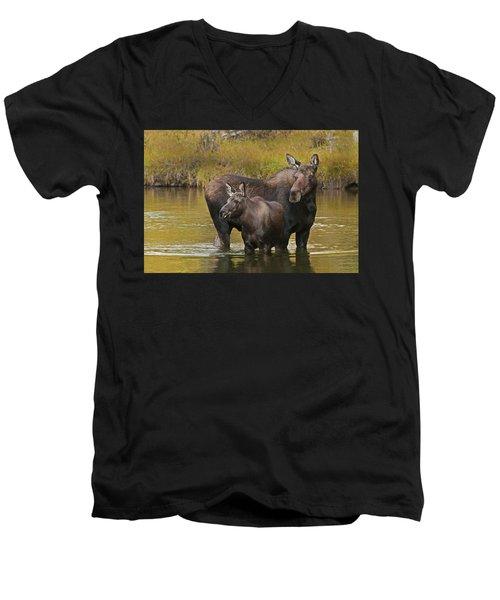 Watchful Moose Men's V-Neck T-Shirt